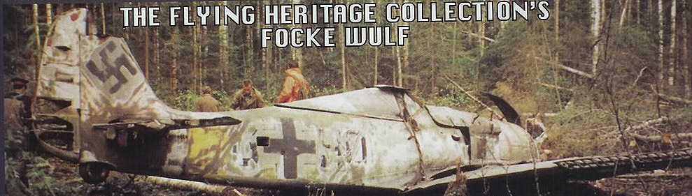 fw 190 3